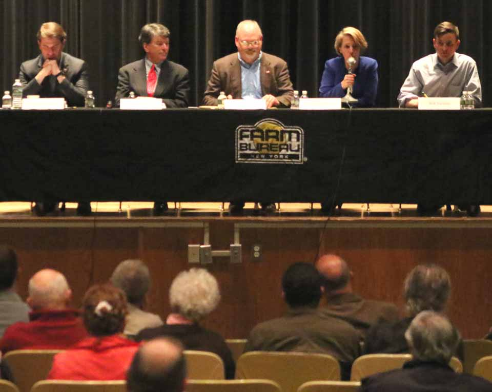 The five congressional candidates for the 19th Congressional District, in Oneonta the other night, are, from left,