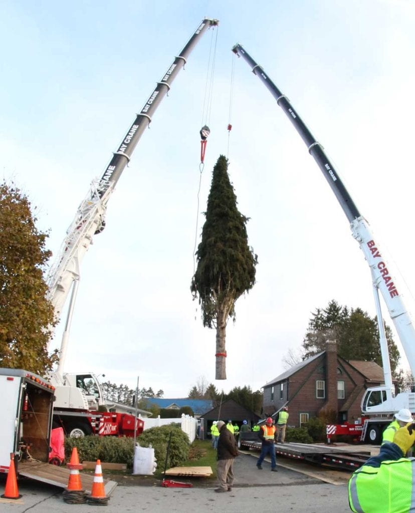 The Eichlers' – and Otsego County's – icon tree hovers above the crowd at County Club Road, Oneonta, this morning before it was lowered on a flatbed for the journey to Rockefeller Center. (Ian Austin/AllOTSEGO.com)