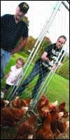 """Daddy Al"" Dicka helps his grandaughters, Jade Dicka and little Adara Martinoli feed his flock of chickens"
