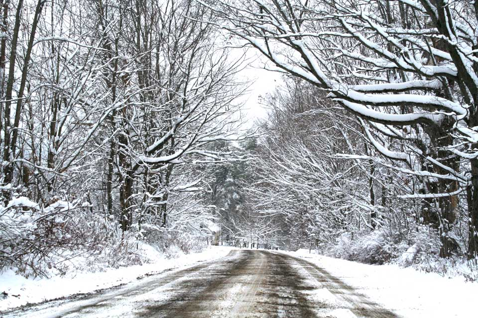 Butler Road in Cherry Valley this morning.  Snow was expected across Otsego County this Thanksgiving Day, but less than a half-inch.  (Jim Kevlin/allotsego.com)