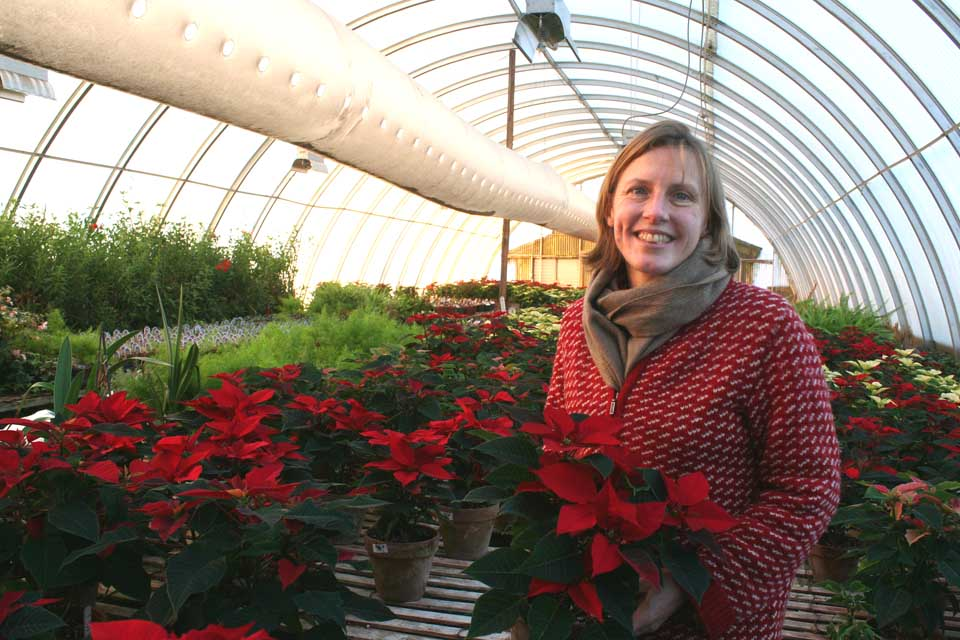 Meg Kennedy poses in her family's greenhouse in Town of Hartwick, the hub of the Kennedys' flower business. She may also be found every Saturday selling flowers – at this time of year, poinsettas – at the Cooperstown Farmers' Market. (AllOTSEGO.com photo)