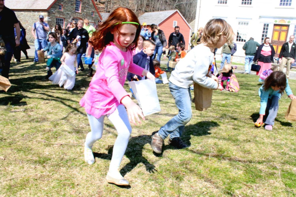 On your mark....get set...GO! Amelia Walker, Cooperstown, and scores of other children race onto common lawn of The Farmers' Museum in search of the golden egg containing a season pass for the Empire State Carousel. However, once all the eggs had been collected, the pass remained at large! Will the ticket surface? Only time will tell! (Ian Austin/AllOTSEGO.com)