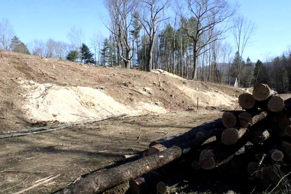 Clearing trees has continued through the weekend at the end of Oneonta's Spruce Street Extension, so work can begin on Oneonta Heights, 40 units of senior-citizen housing and 20 of family housing in the city's Silver Creek section., (AllOTSEGO.com)