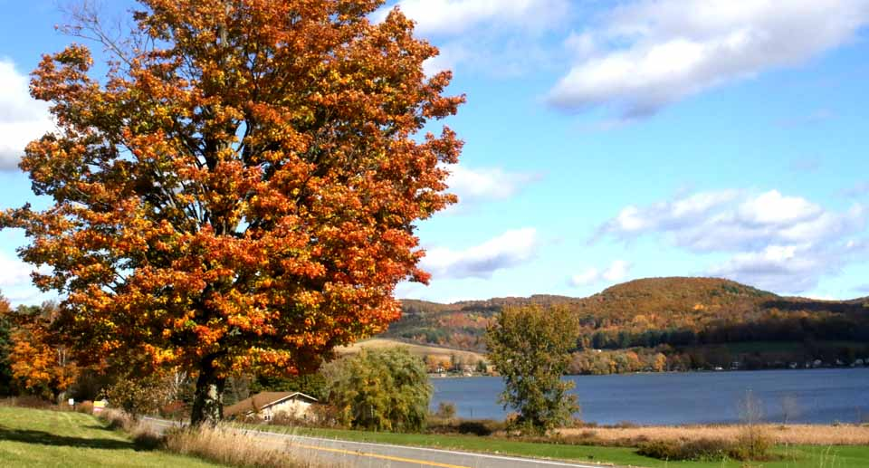 The New York State Foliage Report is showing Otsego County to be just past peak, but Sunday is expected to be sunny and there's enough color to enliven any Sunday drive.  Plan on it.  Here's a view from Route 28 at Canadarago Lake, looking east.  (Jim Kevlin/AllOTSEGO.com)